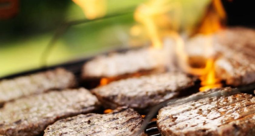 Top List of Campfire Grill Grate You Can Buy now